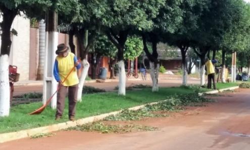 Poda de Arvore Nessa Época Faz Parte da Limpeza Pública